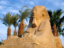 Єгипет, сфінкс в місті Луксор